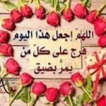 لين الحلقي Profile Picture