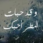 Winter- شتاء Profile Picture